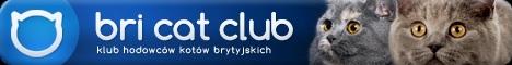 logo BCC klub.jpg